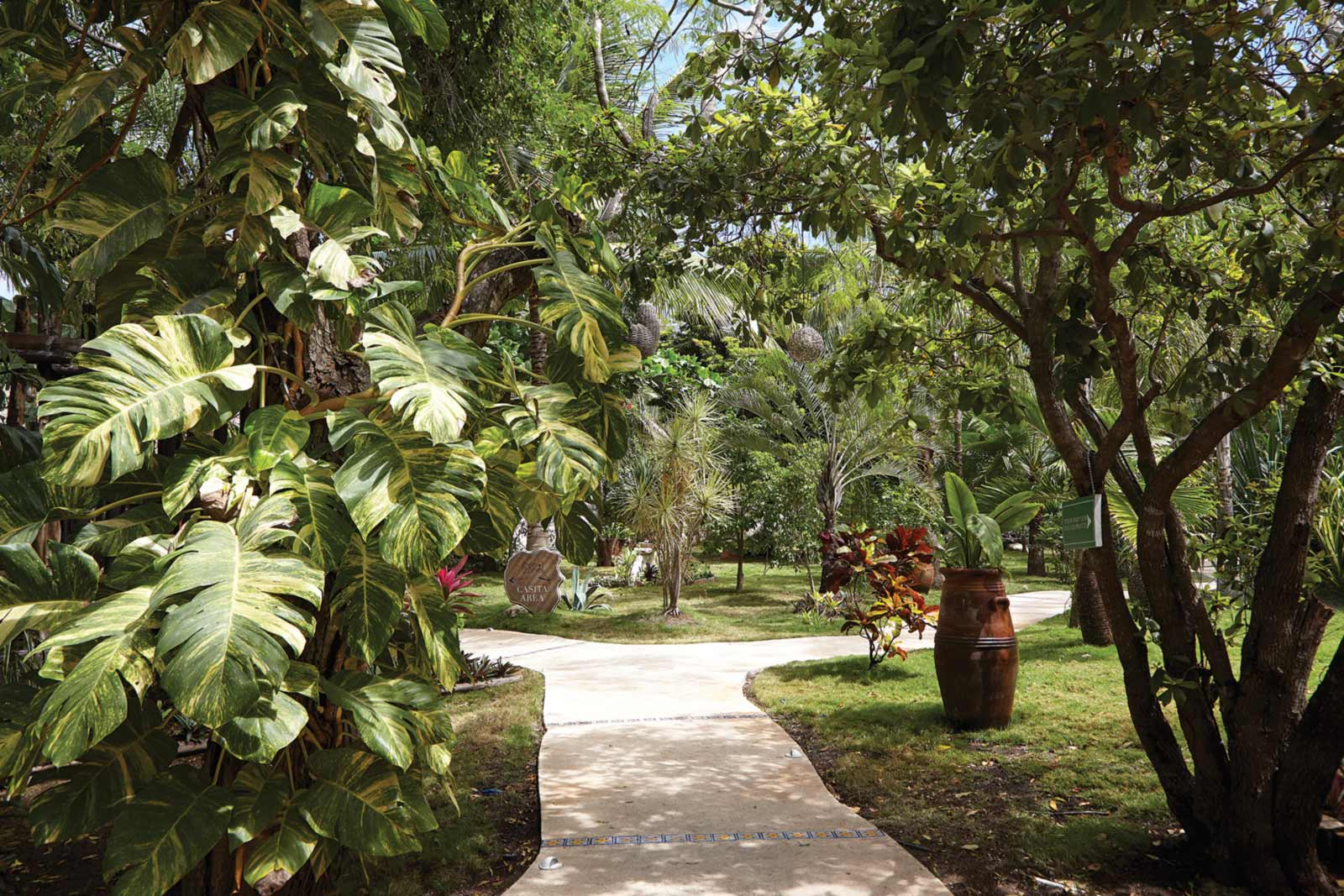 Coco Hacienda A Secret Oasis Of Luxury And Leisure